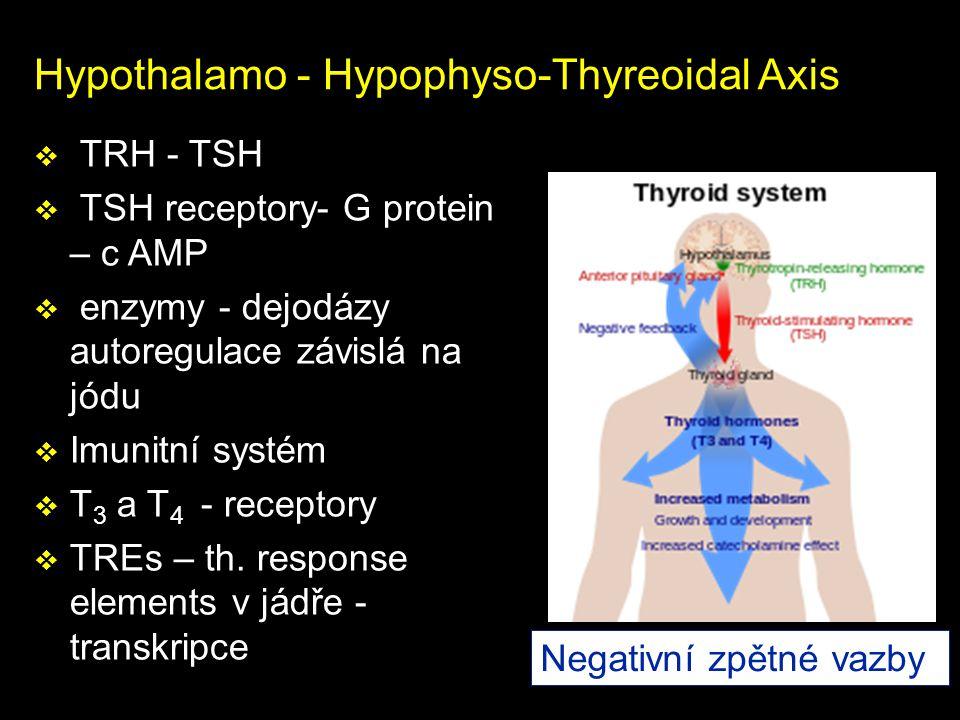 Hypothalamo - Hypophyso-Thyreoidal Axis