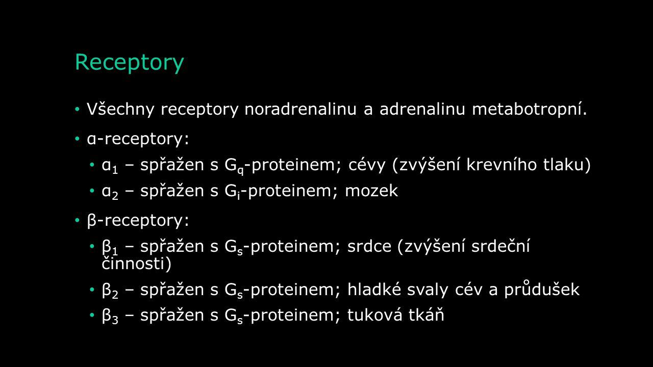 Receptory Všechny receptory noradrenalinu a adrenalinu metabotropní.