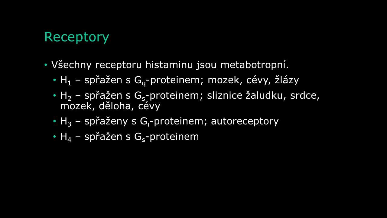 Receptory Všechny receptoru histaminu jsou metabotropní.