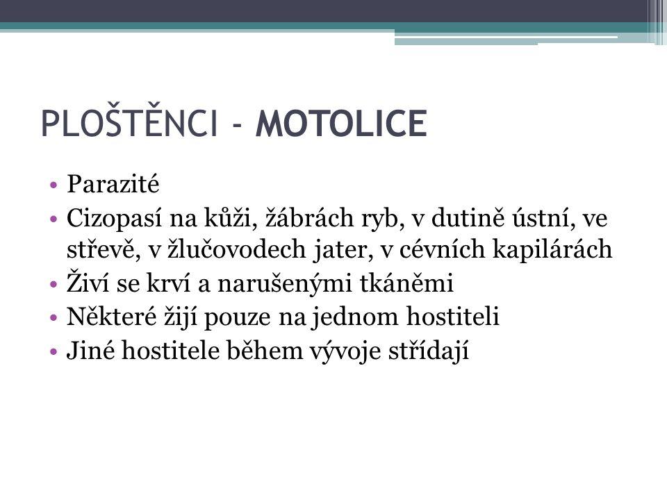 PLOŠTĚNCI - MOTOLICE Parazité