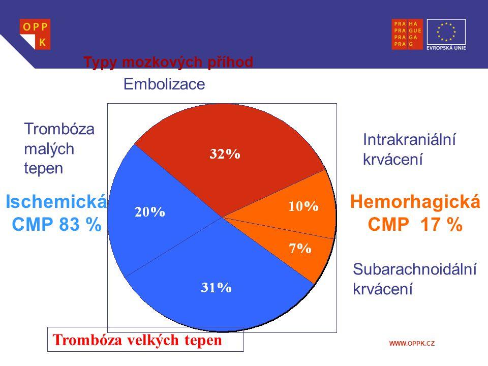 Ischemická CMP 83 % Hemorhagická CMP 17 %