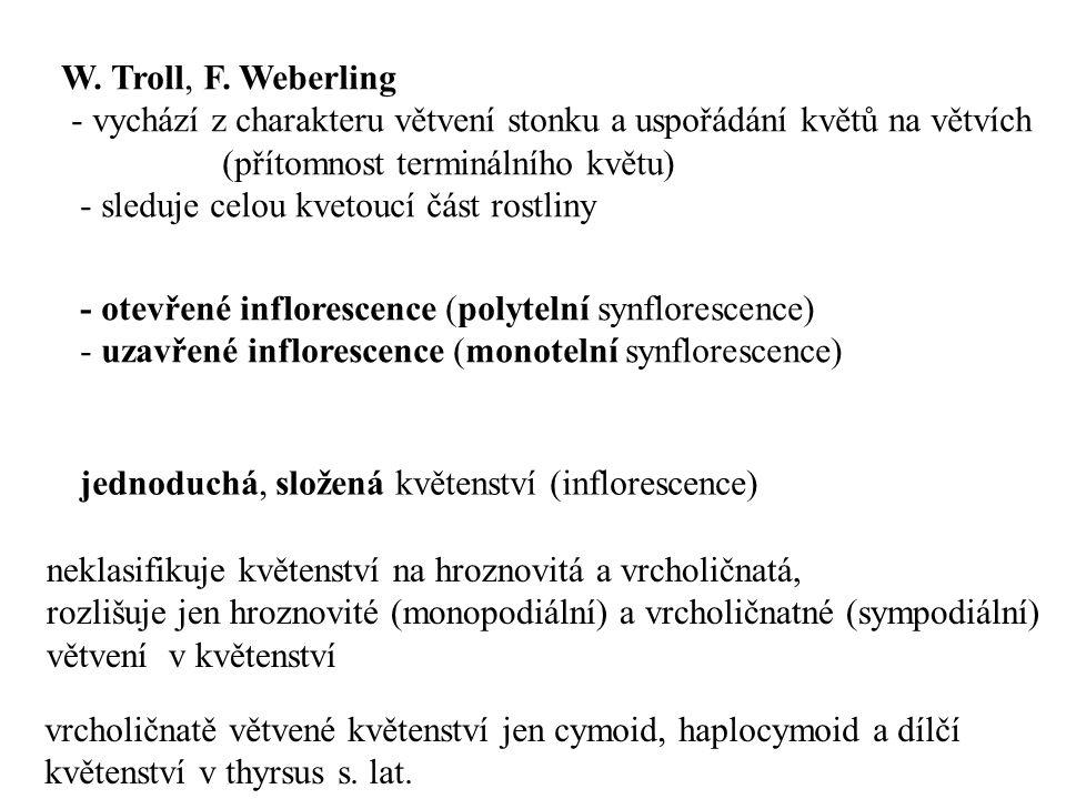 W. Troll, F. Weberling - vychází z charakteru větvení stonku a uspořádání květů na větvích. (přítomnost terminálního květu)
