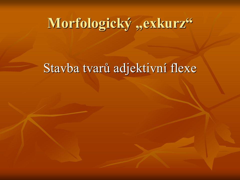 """Morfologický """"exkurz"""