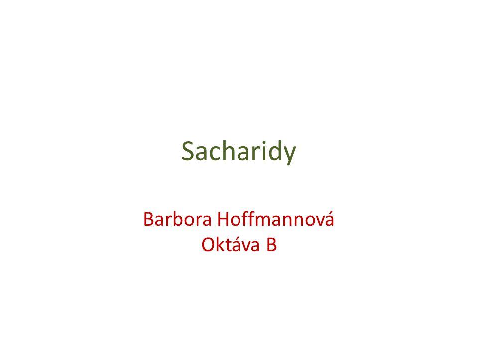 Barbora Hoffmannová Oktáva B