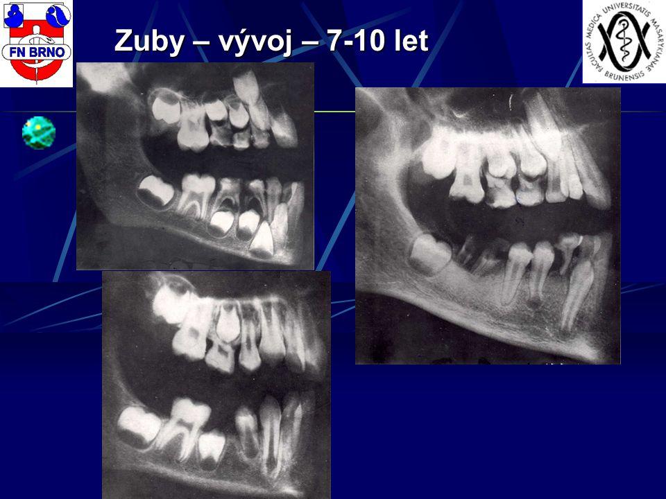 Zuby – vývoj – 7-10 let