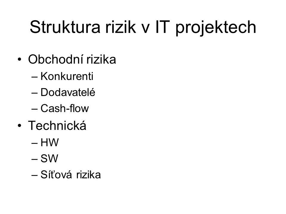 Struktura rizik v IT projektech
