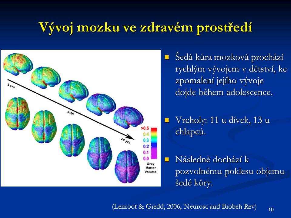 Vývoj mozku ve zdravém prostředí