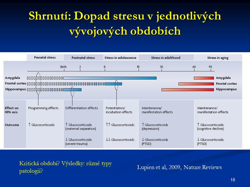 Shrnutí: Dopad stresu v jednotlivých vývojových obdobích
