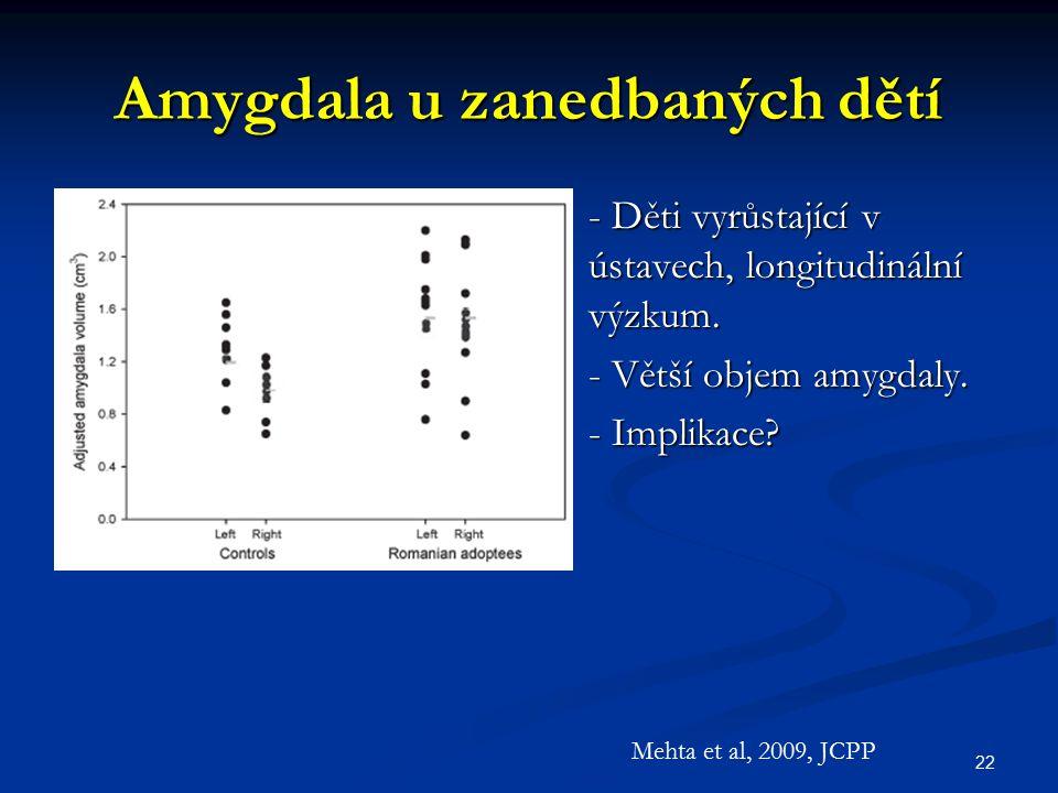 Amygdala u zanedbaných dětí