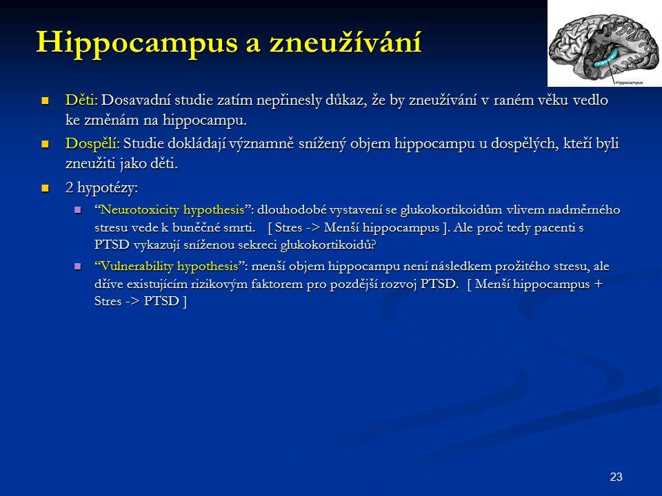 Hippocampus a zneužívání