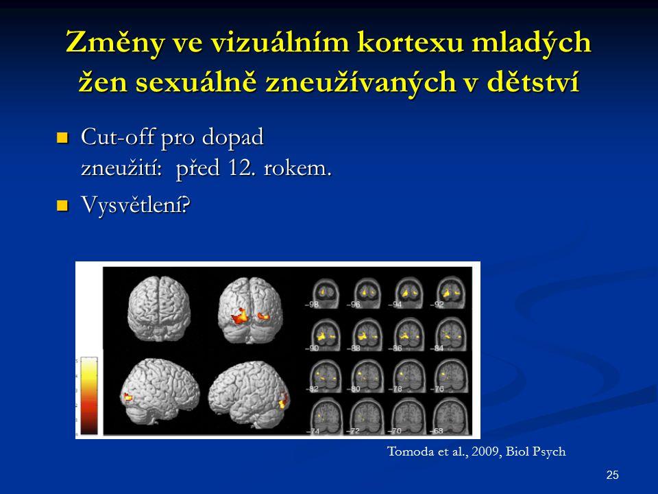 Změny ve vizuálním kortexu mladých žen sexuálně zneužívaných v dětství
