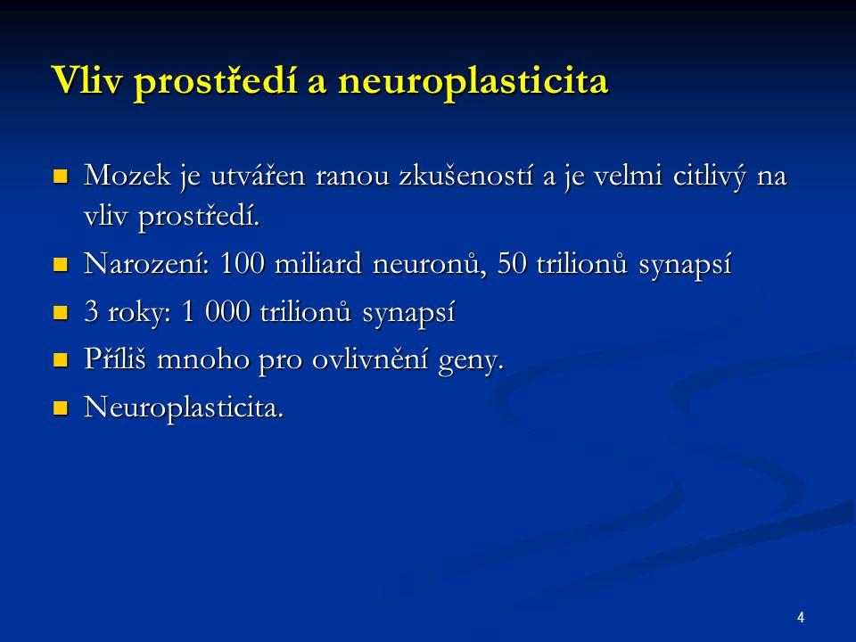 Vliv prostředí a neuroplasticita