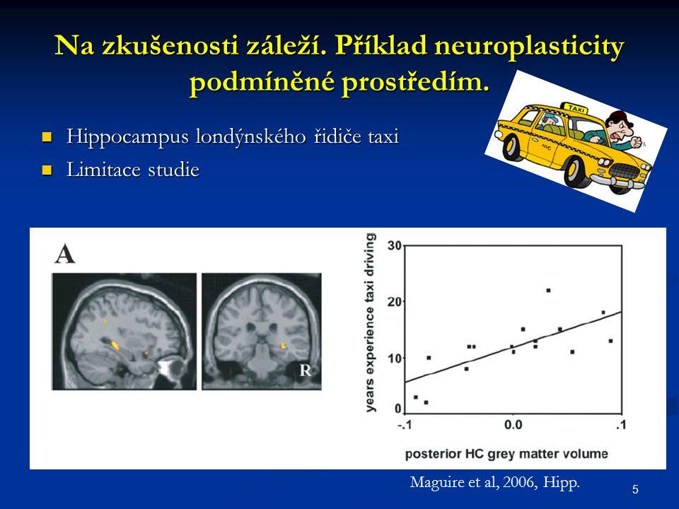 Na zkušenosti záleží. Příklad neuroplasticity podmíněné prostředím.