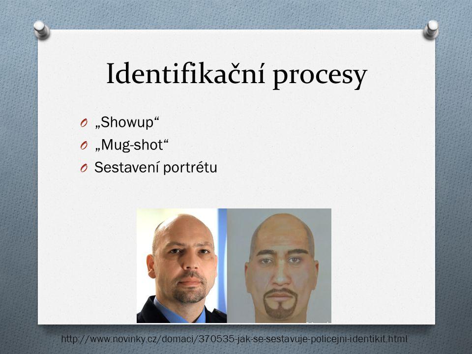 Identifikační procesy