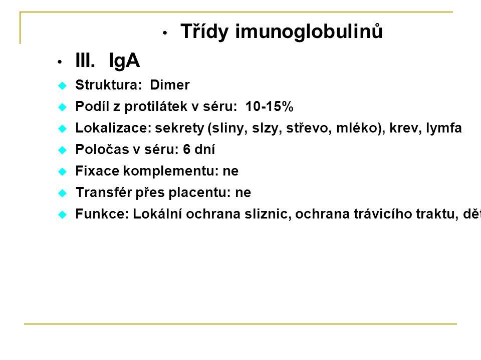 Třídy imunoglobulinů III. IgA Struktura: Dimer
