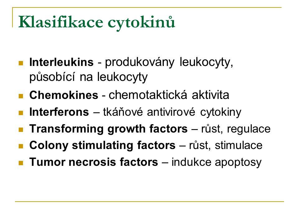 Klasifikace cytokinů Interleukins - produkovány leukocyty, působící na leukocyty. Chemokines - chemotaktická aktivita.