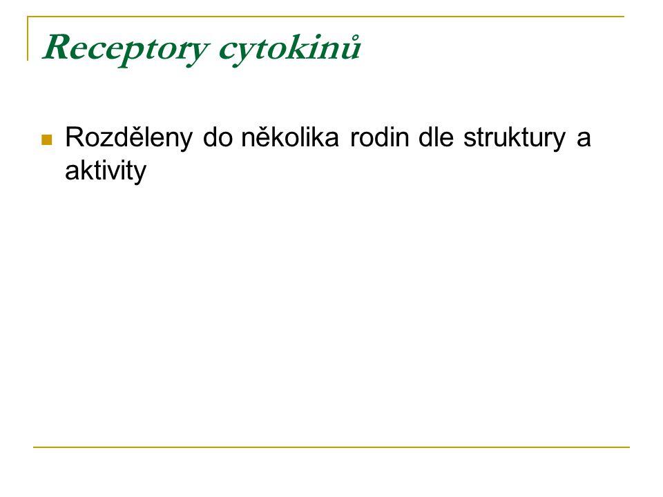 Receptory cytokinů Rozděleny do několika rodin dle struktury a aktivity