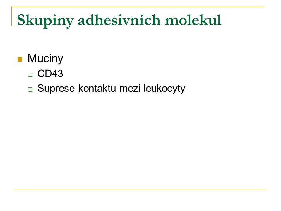 Skupiny adhesivních molekul
