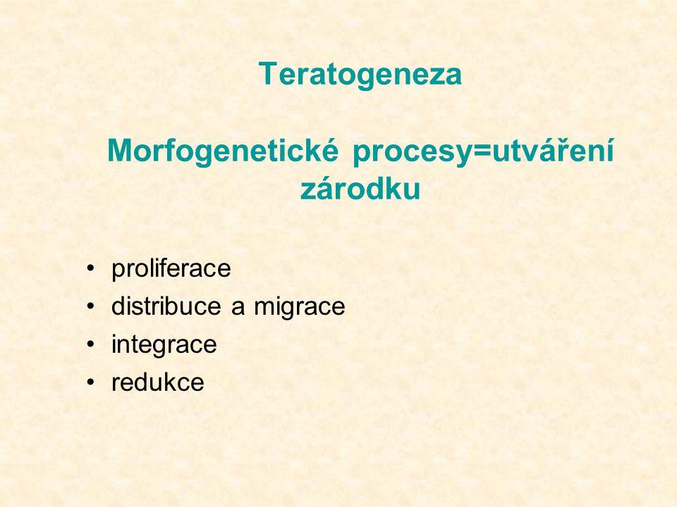 Teratogeneza Morfogenetické procesy=utváření zárodku
