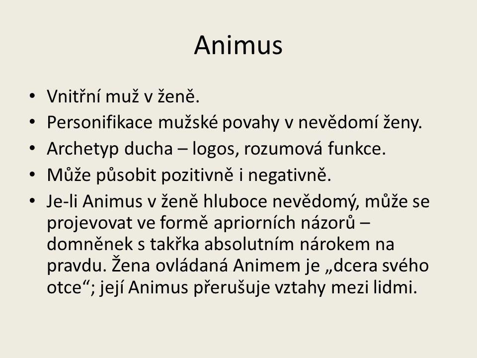 Animus Vnitřní muž v ženě.
