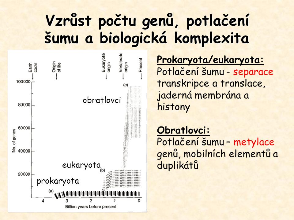 Vzrůst počtu genů, potlačení šumu a biologická komplexita
