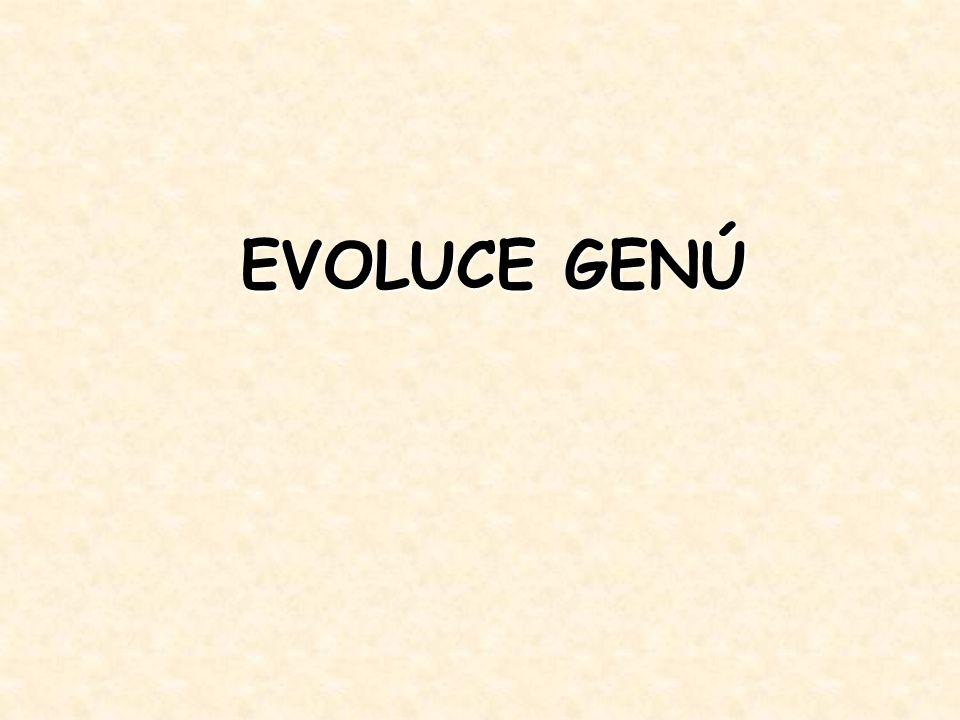 EVOLUCE GENÚ