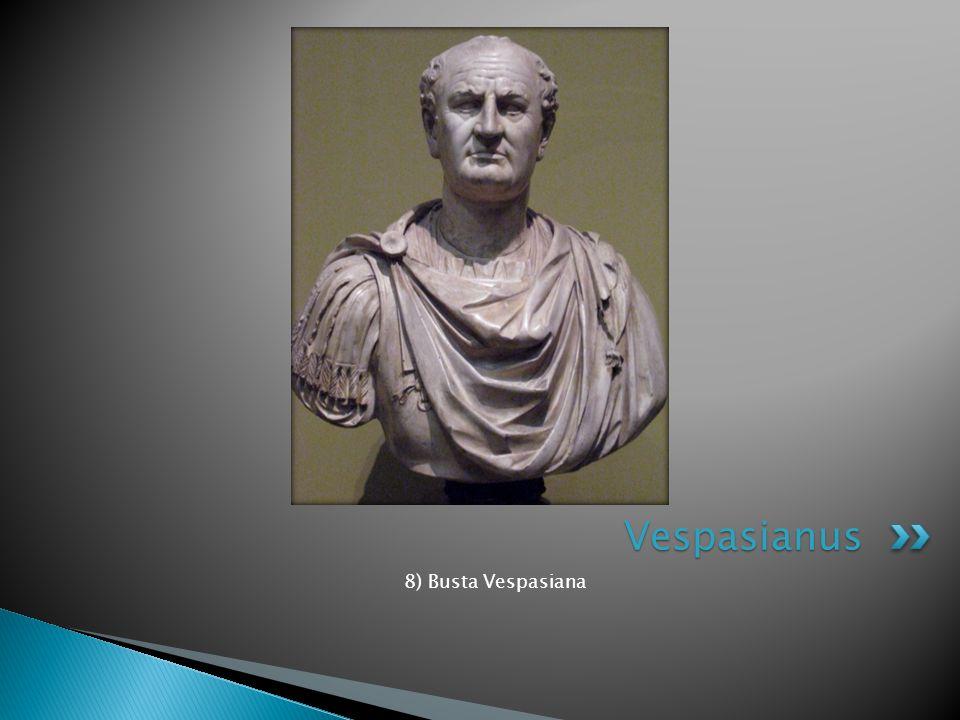Vespasianus 8) Busta Vespasiana