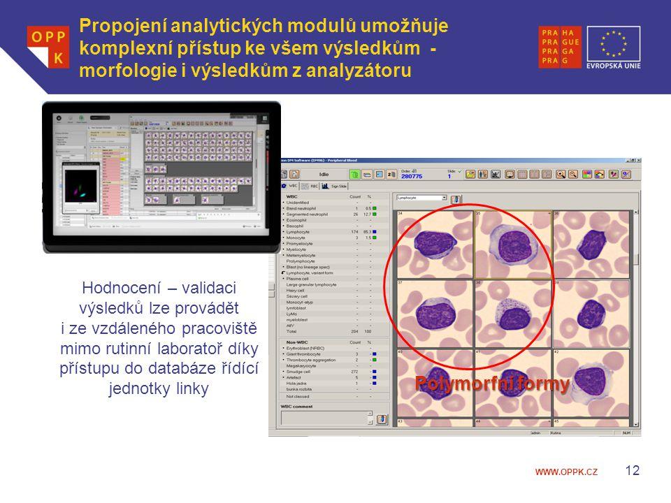 Propojení analytických modulů umožňuje komplexní přístup ke všem výsledkům - morfologie i výsledkům z analyzátoru