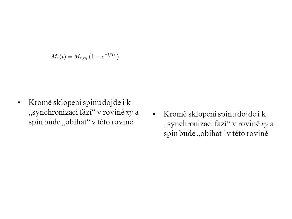 """Kromě sklopení spinu dojde i k """"synchronizaci fází v rovině xy a spin bude """"obíhat v této rovině"""