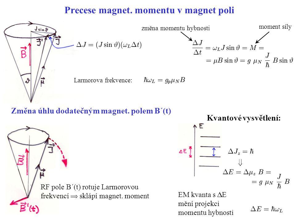 Precese magnet. momentu v magnet poli