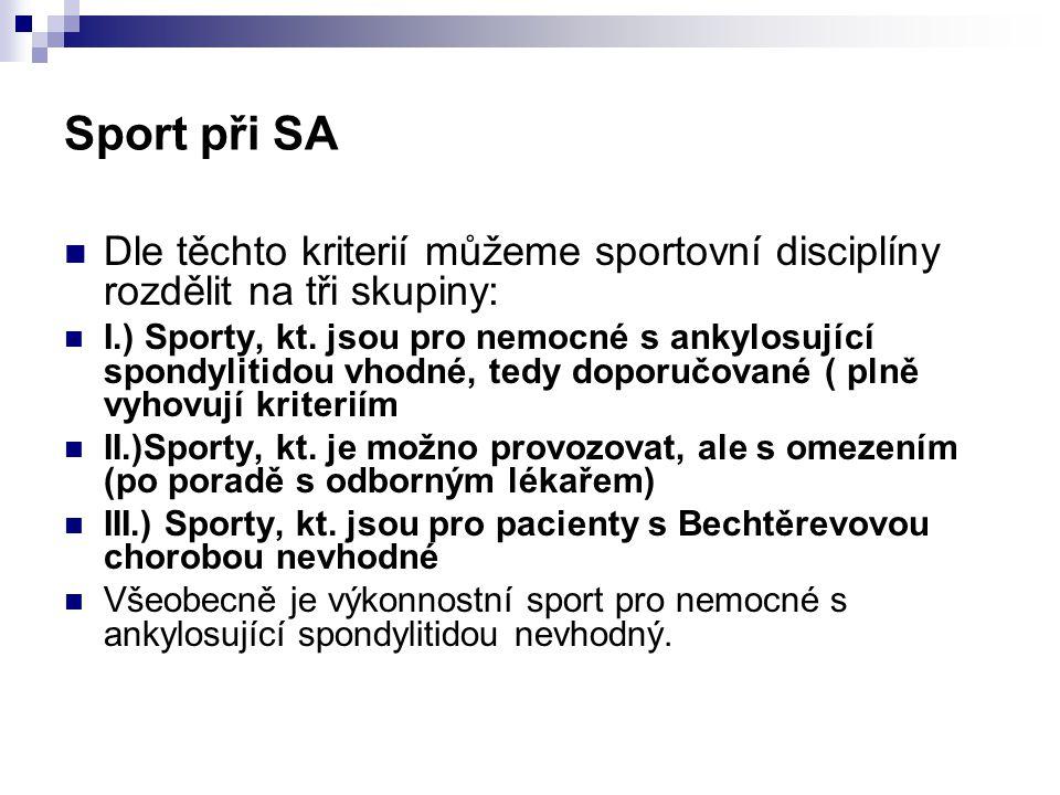 Sport při SA Dle těchto kriterií můžeme sportovní disciplíny rozdělit na tři skupiny: