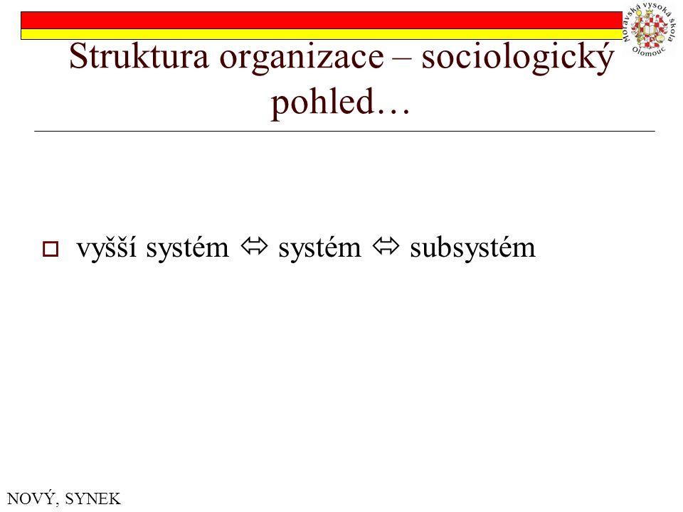 Struktura organizace – sociologický pohled…