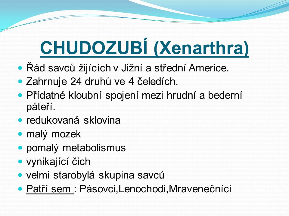 CHUDOZUBÍ (Xenarthra)