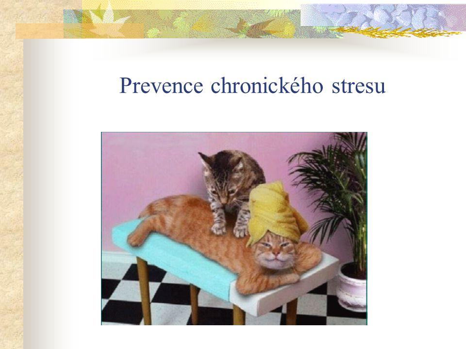 Prevence chronického stresu