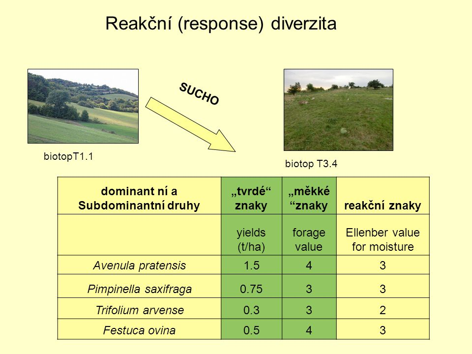 Reakční (response) diverzita