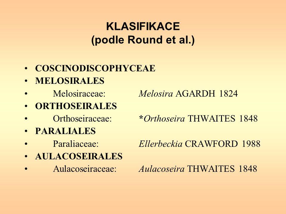 KLASIFIKACE (podle Round et al.)