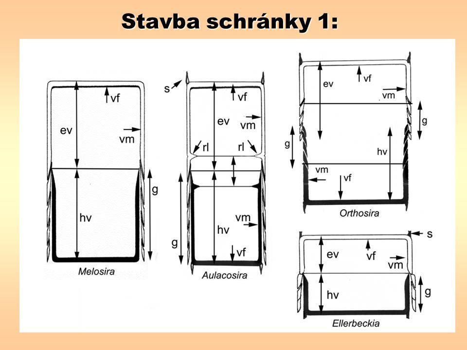 Stavba schránky 1:
