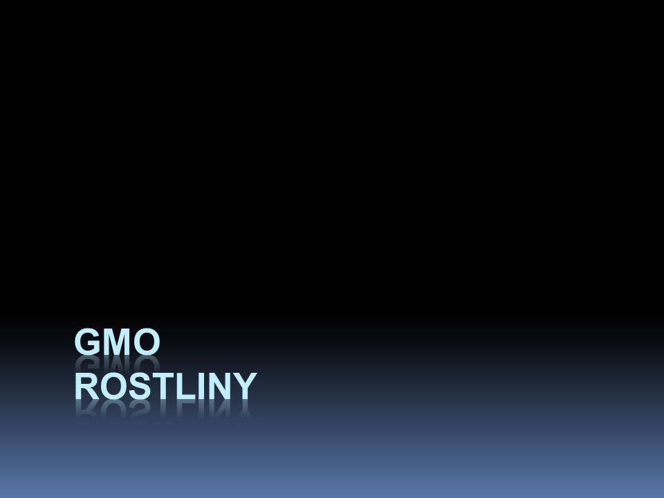 GMO rostliny