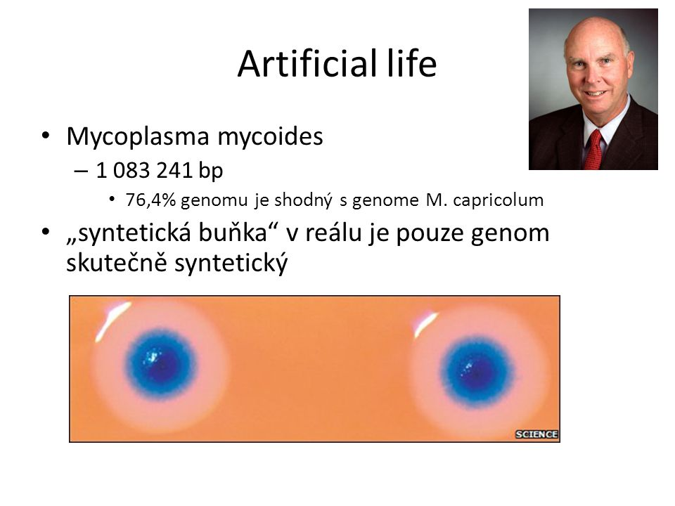 Artificial life Mycoplasma mycoides