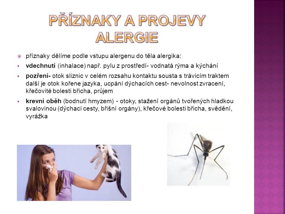 Příznaky a projevy alergie