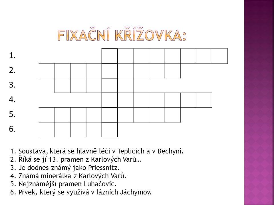 Fixační křížovka: 1. 2. 3. 4. 5. 6. 1. Soustava, která se hlavně léčí v Teplicích a v Bechyni.