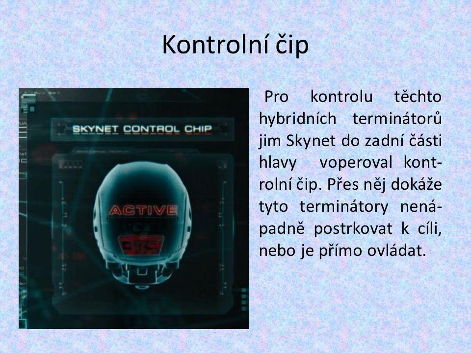 Kontrolní čip