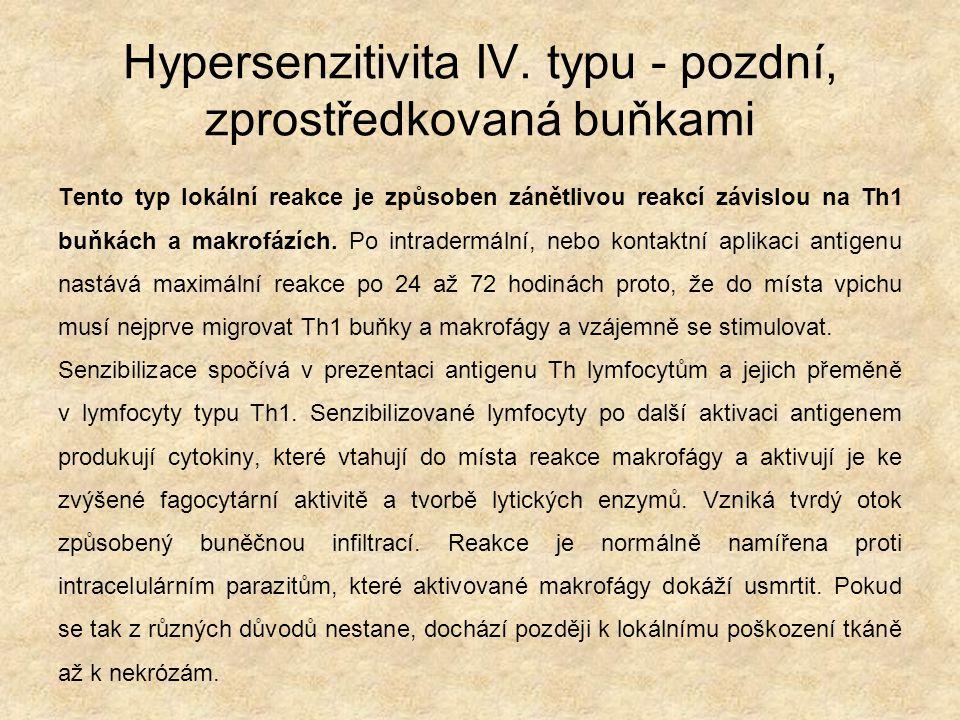 Hypersenzitivita IV. typu - pozdní, zprostředkovaná buňkami