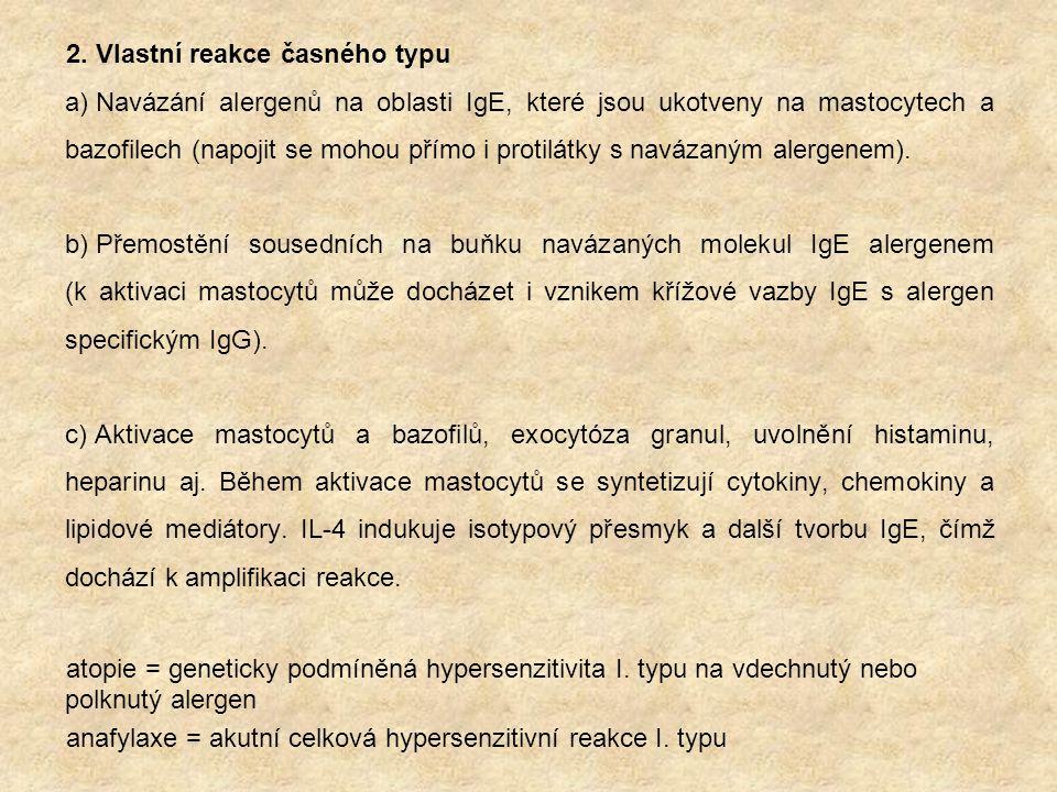2. Vlastní reakce časného typu