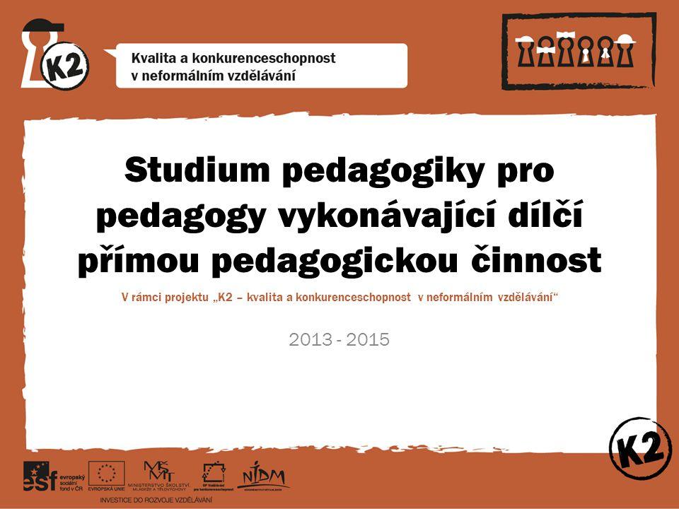 Studium pedagogiky pro pedagogy vykonávající dílčí přímou pedagogickou činnost