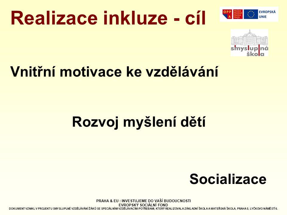 Realizace inkluze - cíl