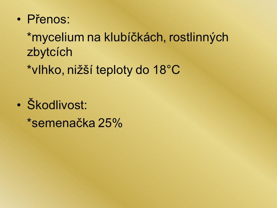 Přenos: *mycelium na klubíčkách, rostlinných zbytcích. *vlhko, nižší teploty do 18°C. Škodlivost: