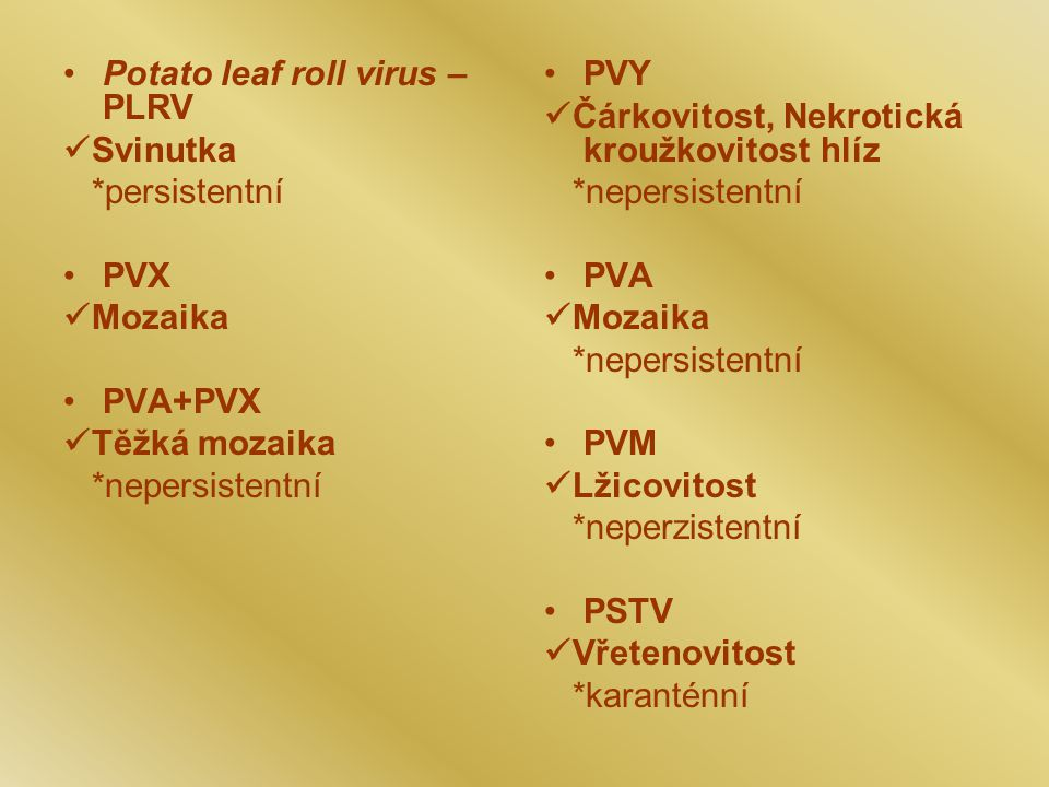 Potato leaf roll virus – PLRV