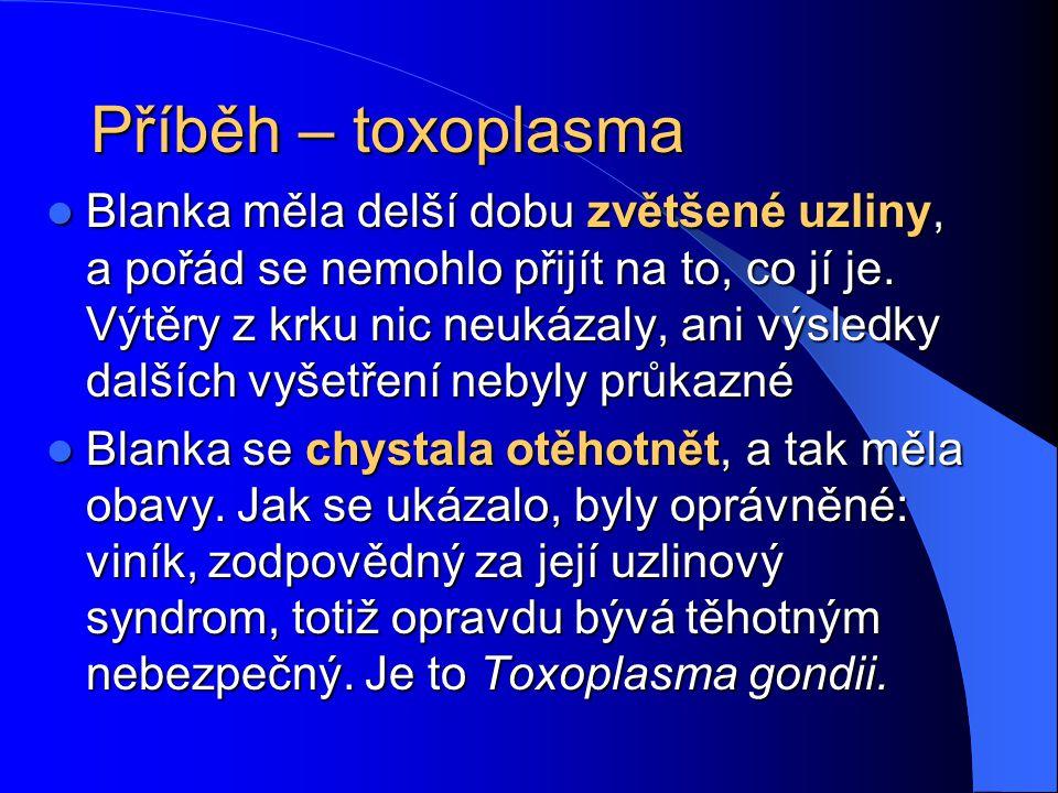 Příběh – toxoplasma