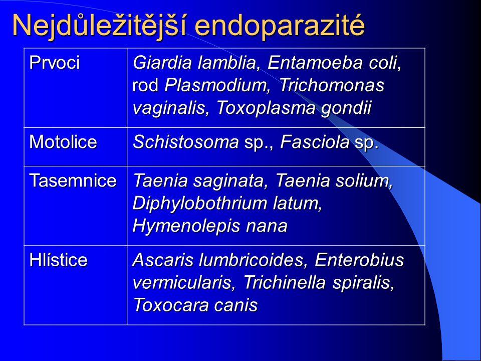 Nejdůležitější endoparazité